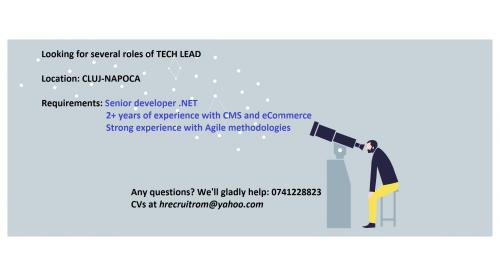 Technical Lead roles