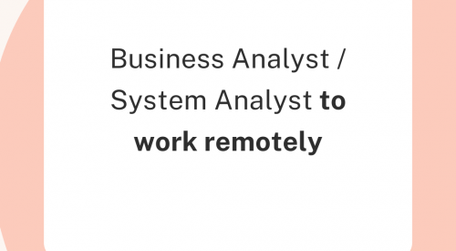 Business Analyst / System Analyst