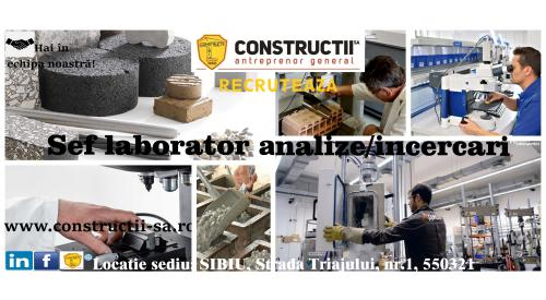 SEF LABORATOR ANALIZE/INCERCARI IN CONSTRUCTII